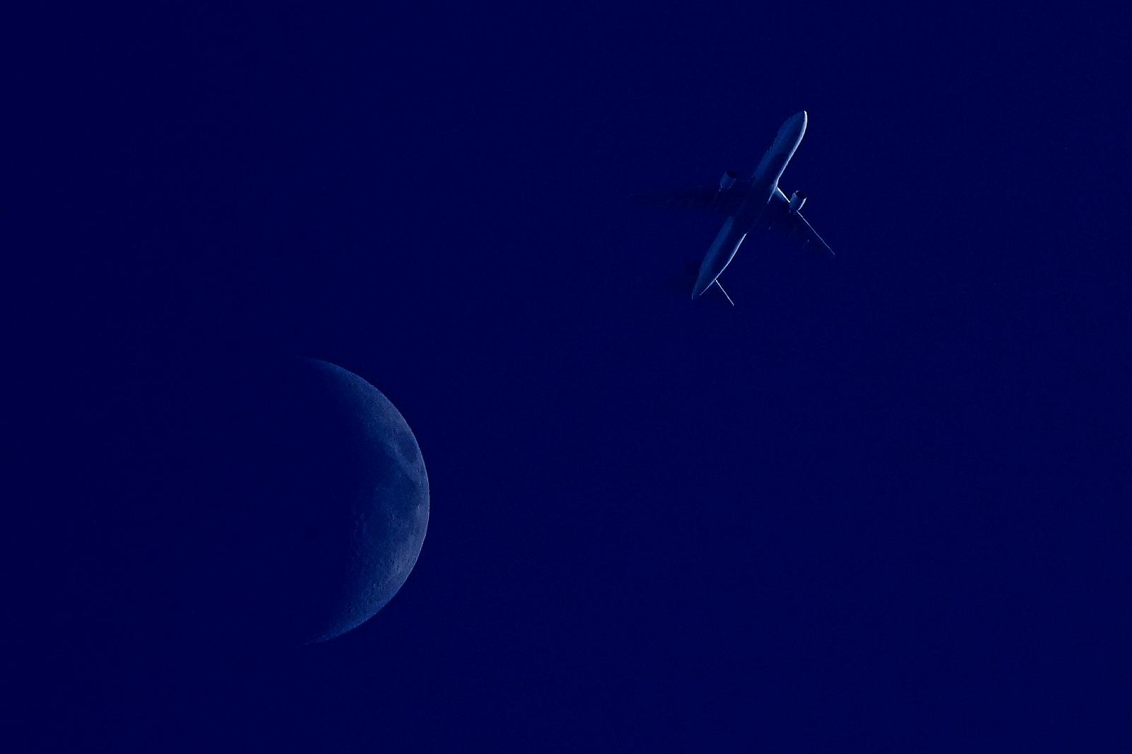 飛行機の画像 p1_28