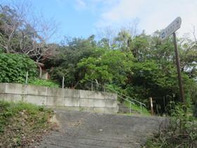 南城市:沖縄の風景