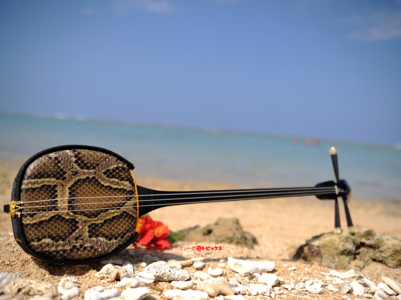 沖縄音楽にかかせない三線